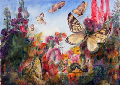 Life of a Painted Lady